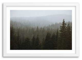 """Kevin Russ, Snowy Forest -40"""" x 28""""-Framed - One Kings Lane"""