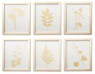 Plant Study II - Linen/Gold (Set of 6) - One Kings Lane