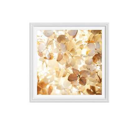 "Soft Light Framed Print by Cindy Taylor-25""x25""-Mat - Pottery Barn"