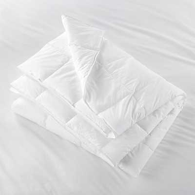 Hypoallergenic Down Alternative King Duvet Insert - Crate and Barrel