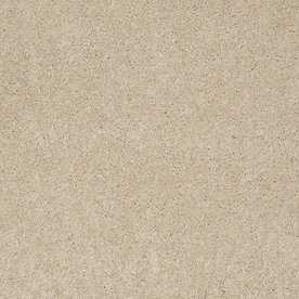 STAINMASTER  Carpet - Lowes