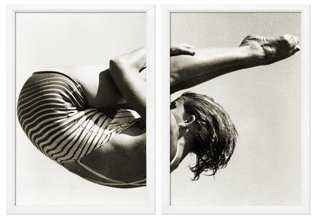Philip Gendreau, Sepia Diver Diptych - One Kings Lane