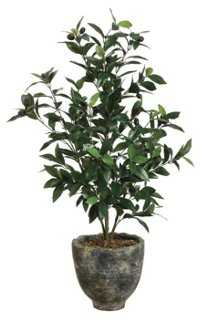 3' Olive Tree in Planter, Faux - One Kings Lane