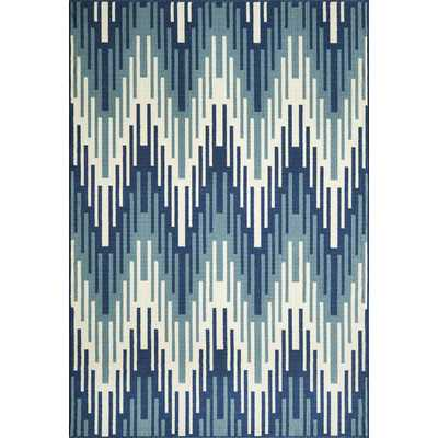 "Baja Blue Indoor/Outdoor Area Rug - 6'7"" x 9'6"" - Wayfair"