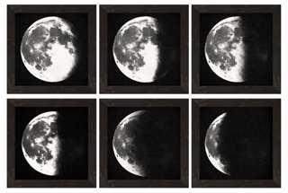 """S/6 Moon Descending Prints - 28"""" x 42"""" - Framed - One Kings Lane"""