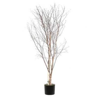 Winter Birch Deluxe Tree in Pot - Wayfair