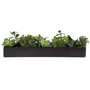 Succulent Planter - Z Gallerie