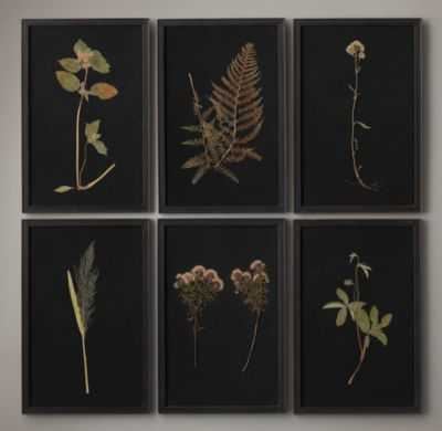 "HAND-PRESSED BOTANICALS ON LINEN BLACK-11½""W x 17½""H-Framed - RH"