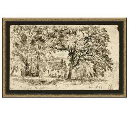 "Gum Spring Framed Print - 36.25"" x 0.875"" x 23.25"" - Pottery Barn"
