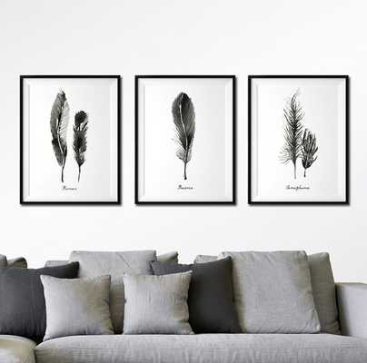 Feather print Set of 3 print - Etsy