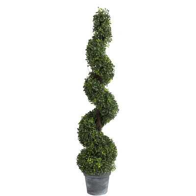 Spiral Boxwood Topiary in Pot - Wayfair