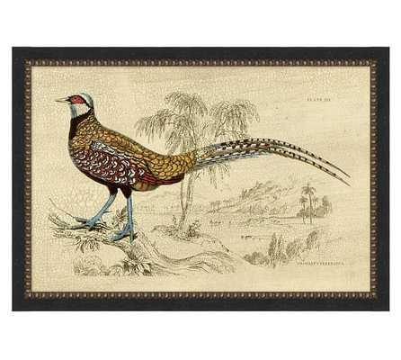 "Crackled Pheasant Print, 33.25"" x 1"" x 23.25"" - Framed - Pottery Barn"