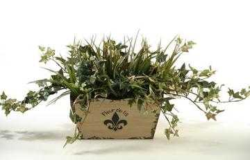JAMAICAN IVY AND GRASS IN FLEUR DE LIS PLANTER - Home Decorators