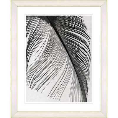 """""""Feather"""" - Framed - AllModern"""