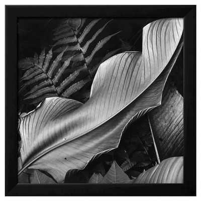 Art.com -Leaf, 1979 - Target