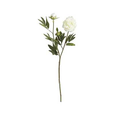 White Peony Artificial Flower Stem - Crate and Barrel