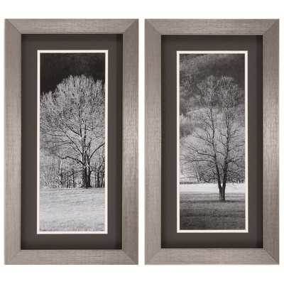 """Black and White Trees 2 Piece Framed Photographic Print Set - 26"""" H x 14"""" W - Wayfair"""