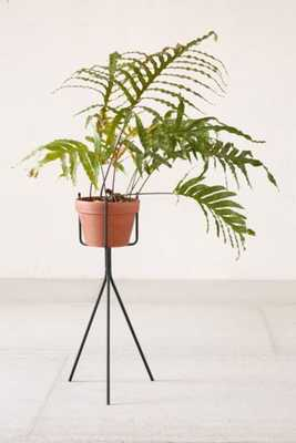 Tripod Plant Stand - Urban Outfitters