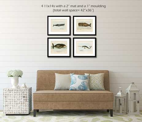 Whale Posters, Whale Wall Art-8x10-Unframed - Etsy