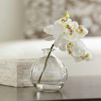 Faux White Orchid Arrangement - Birch Lane