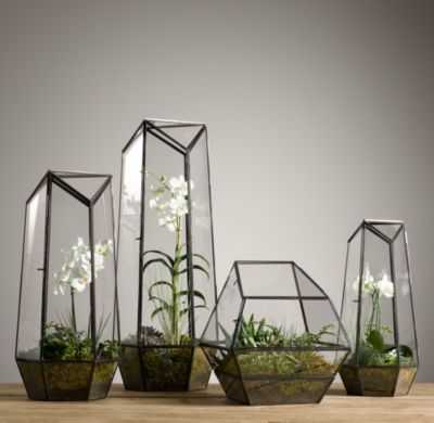 Faceted Glass Terrarium - Wide - RH