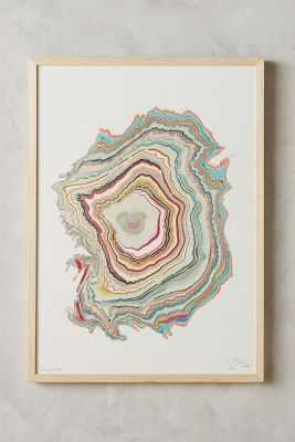 "Wood Rings Wall Art - 28.5""H, 21""W - Framed - Anthropologie"
