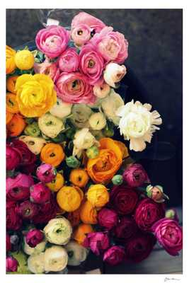 Loads of Ranunculus - Domino