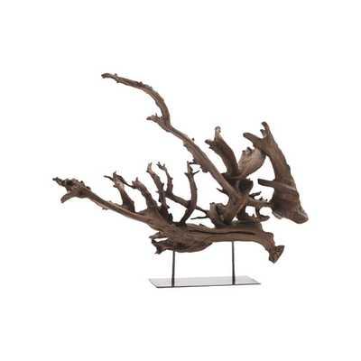 Kazu Dragon Tree Root Sculpture - Small - AllModern