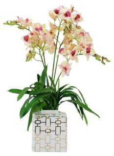 Orchid Dendrobium in Planter, Faux - One Kings Lane