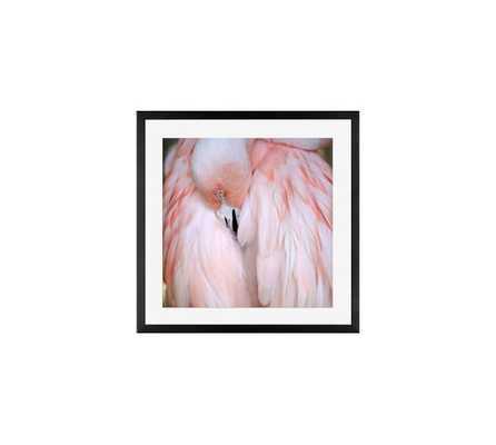 "Flamingo Framed Print by Alicia Bock - 18 X 18"" - Pottery Barn"