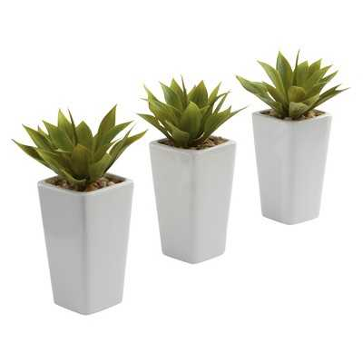 Nearly Natural Mini Agave w/ Planter - Set of 3 - White - Target