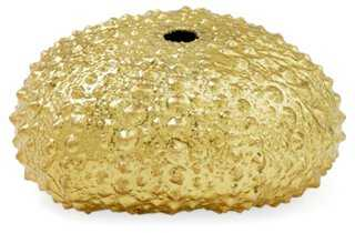 Gold-Plated Sea Urchin - One Kings Lane