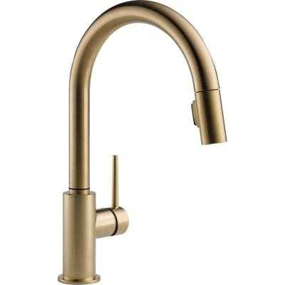 Trinsic Single-Handle Pull-Down Sprayer Kitchen Faucet in Champagne Bronze Featuring MagnaTite Docki - Home Depot