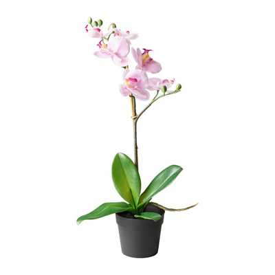 FEJKA Artificial potted plant, Orchid lilac - Ikea