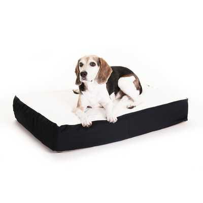Orthopedic Double Pet Pillow - AllModern