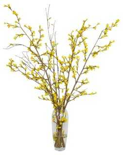 "42"" Yellow Forsythia in Glass Vase, Faux - One Kings Lane"