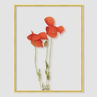 "Still Acrylic Wall Art - Poppy - 14""w x 18""h. - Framed - West Elm"