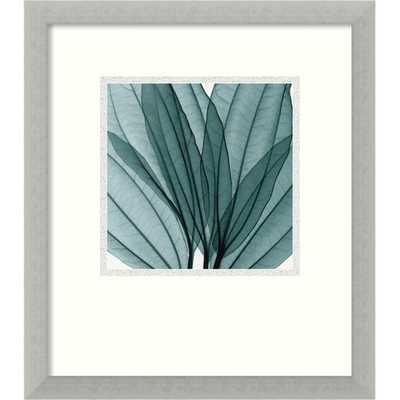 "'Leaf Bouquet' by Steven N. Meyers Framed Photographic Print - 16.68"" H x 14.68"" W x 0.5"" D - AllModern"