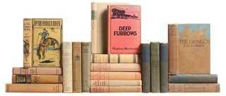 Antique Western Novels, S/20 - One Kings Lane