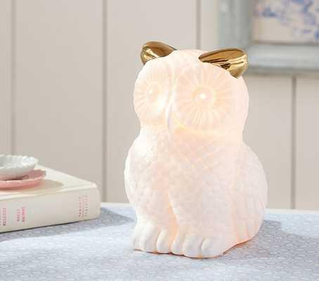 Glowing Owl Lamp - Pottery Barn Kids