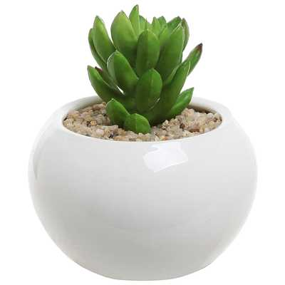 3.5 Inch Small White Ceramic Succulent Planter - Amazon