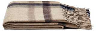 Ombre Stripe Throw - One Kings Lane
