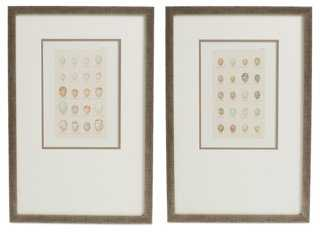 Egg Study Diptych - One Kings Lane
