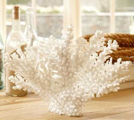 WHITE SPIKE CORAL - Pottery Barn