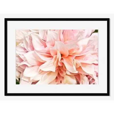 Blooming Dahlia by Lauren Volo - Large, Mat - Framed - West Elm