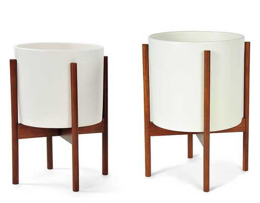case study cylinder planter with wood stand - Large - hivemodern.com
