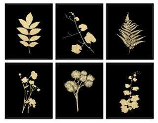 Plant Study II - Unframed - One Kings Lane