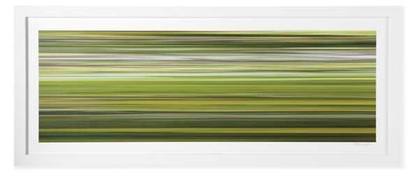"""Boissiere, Vitesse No. 11 - 54"""" x 22.5"""" - Framed - Room & Board"""