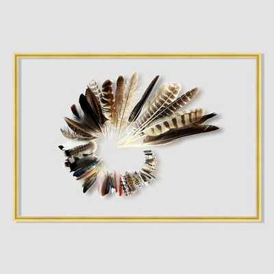 """Still Acrylic Wall Art - Feather Collection -  24""""w x 16""""h - Framed - West Elm"""