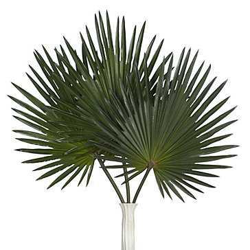 Palm Stem - Set of 3 - Z Gallerie